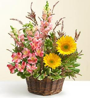 Summer Garden Basket