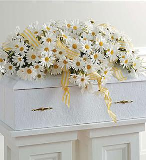 Infant Casket Spray with Daisies
