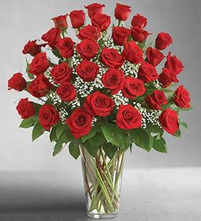 Ultimate Premium Long Stem Red Roses