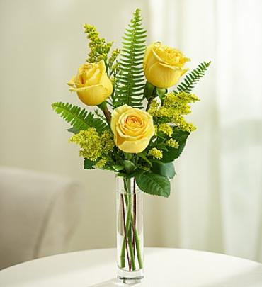 Love\'s Embrace™ Roses - Yellow